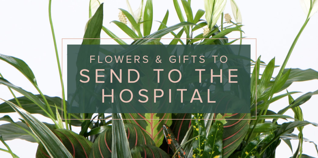 Lifestyle-HospitalGifts-blog
